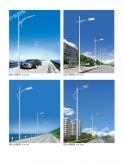 上海道路灯DLD-4